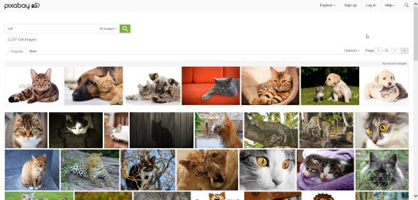 2015-01-15-18_02_00-Cat-Free-Images-on-Pixabay-Internet-Explorer