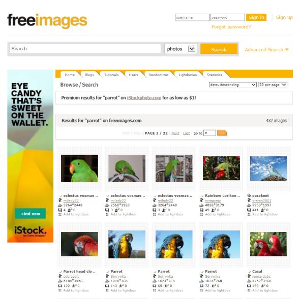 2015-01-15-18_03_25-Parrot-Stock-Photos-freeimages-Internet-Explorer