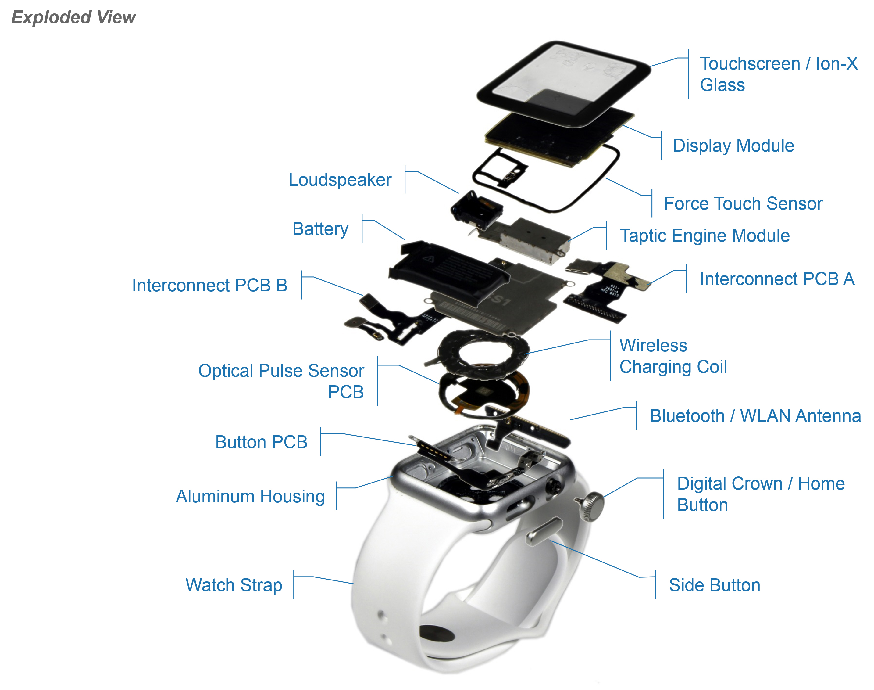 2227992_Apple_Watch_Exploded_View_Pic_042915