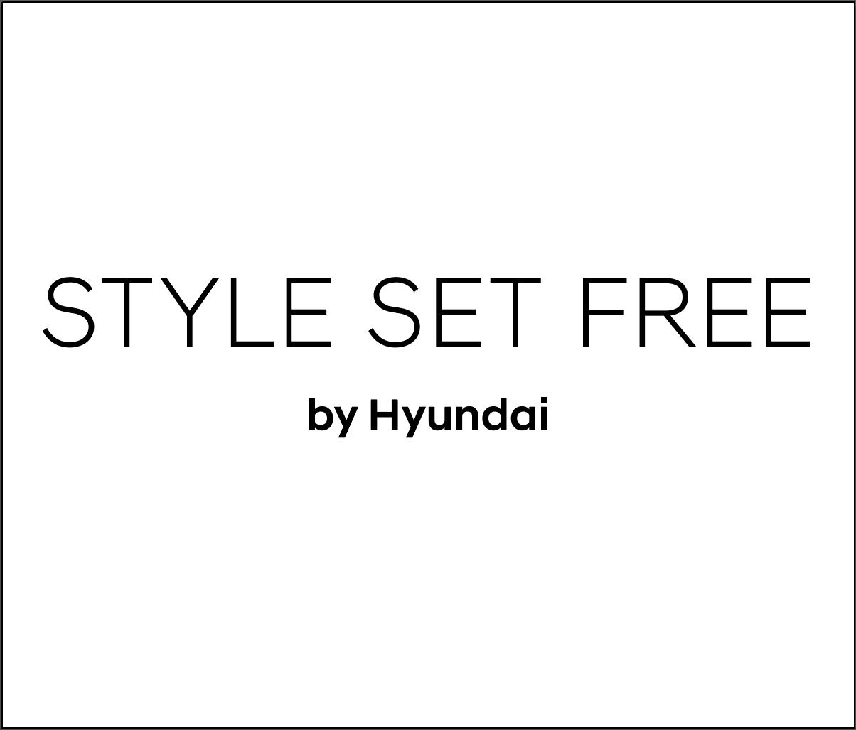 Style Set Free logo